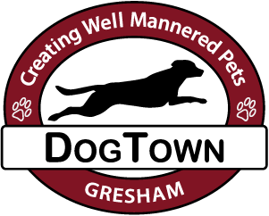 Dogtown day care and dog grooming with self wash baths and dog gresham or 97080 solutioingenieria Gallery