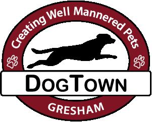 Dog Town Logo