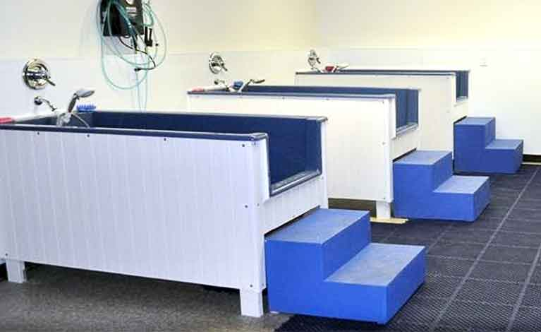 Dogtown day care and dog grooming with self wash baths and dog dog grooming solutioingenieria Choice Image